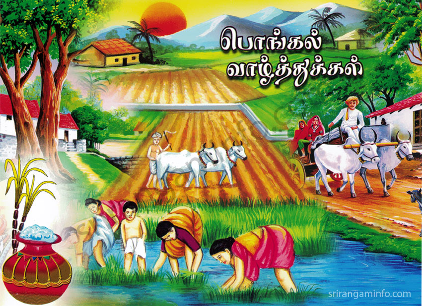 Pongal greetings 2017 tamil