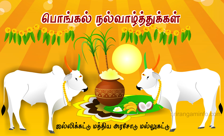 Pongal greetings 2017 jallikattu.jpg
