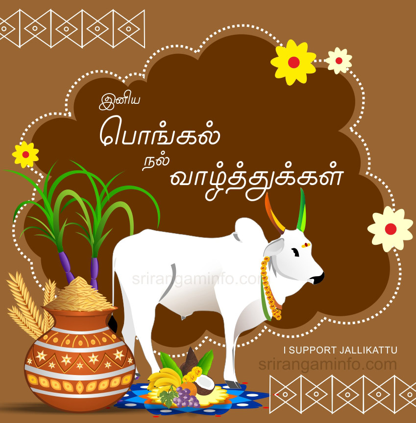 Pongal greetings in tamil pongal greetings tamil 2017 jallikattu m4hsunfo