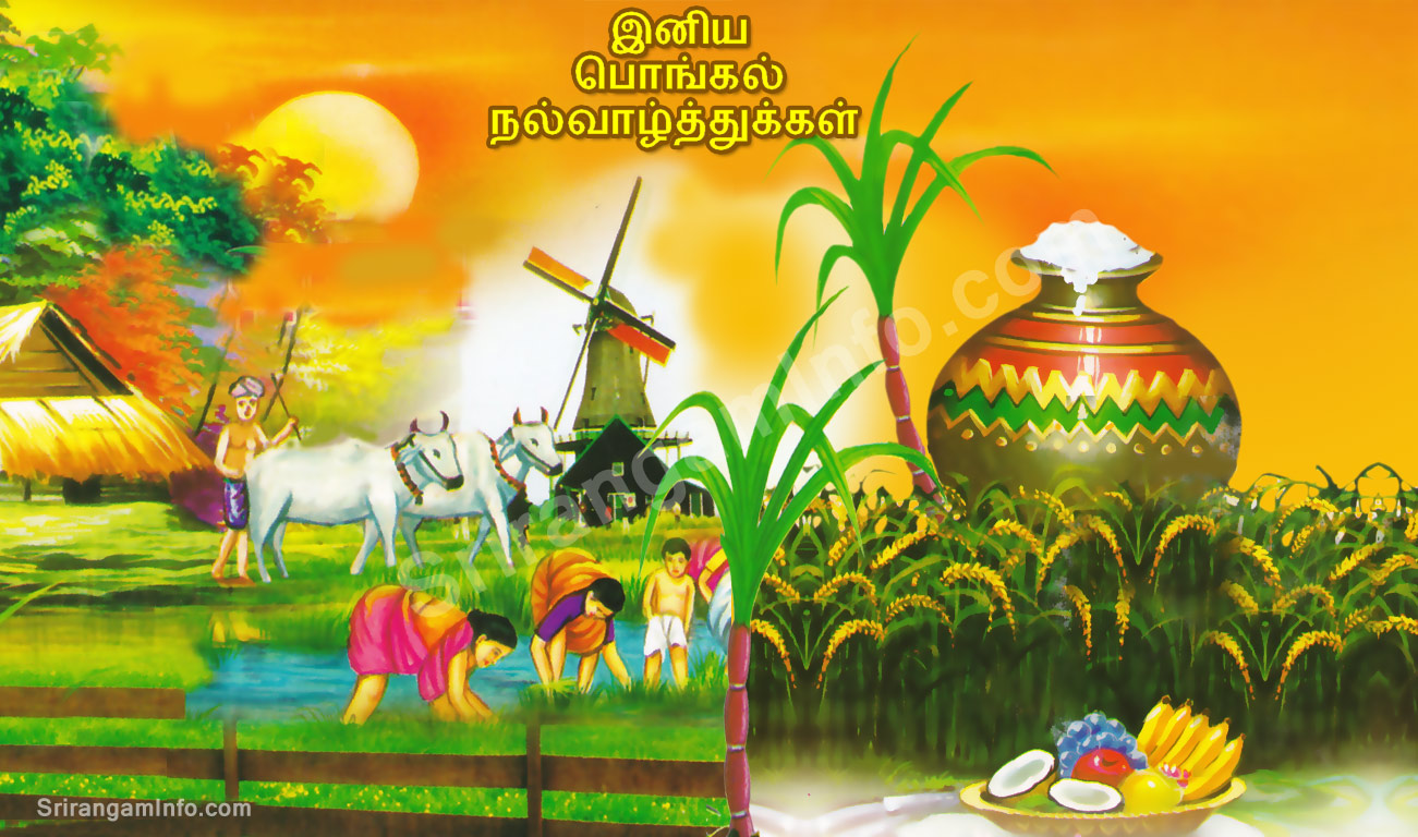 PONGAL greetings in tamil