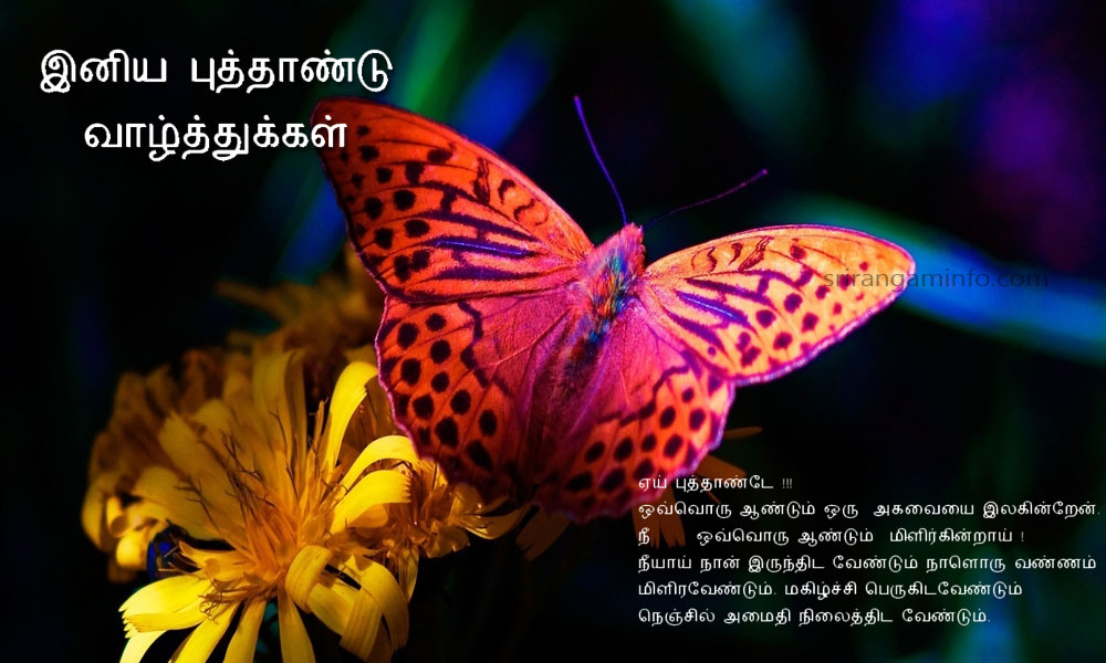 new year 2014 greetings butterfly tamil text wishes