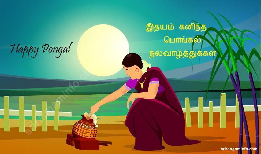 Pongal greetings in tamil 2013