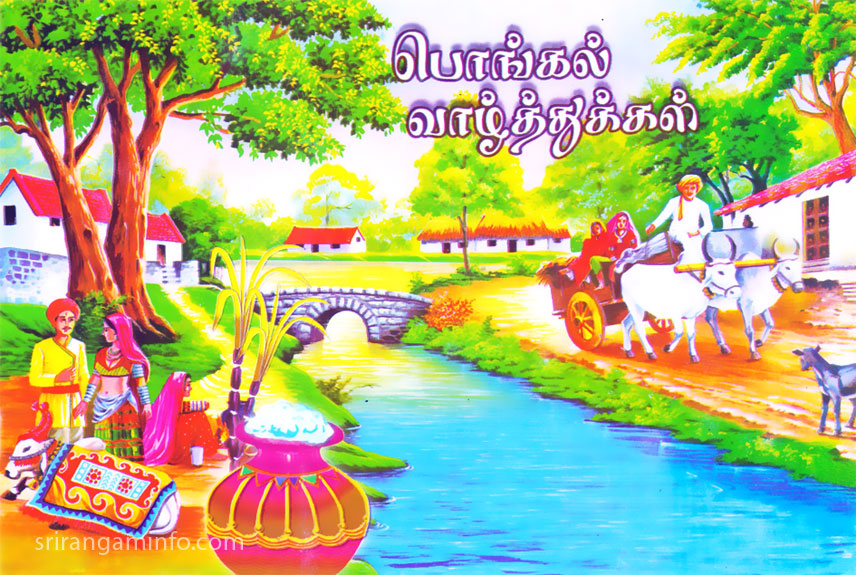 pongal greetings village pongal cow car