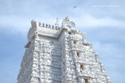 vellai gopuram white tower